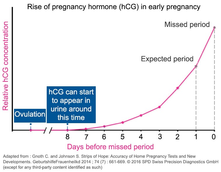 chart showing hcg levels over time
